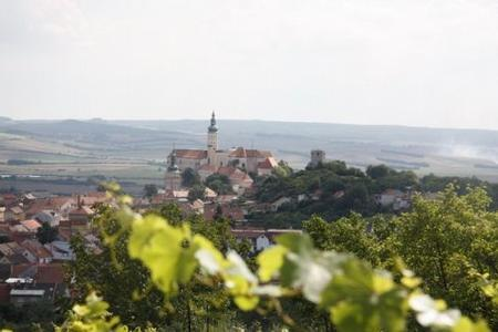 Enjoy the Pálava and Lednice-Valtice areas