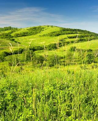 Dolní Dunajovice – NPP Dunajovické kopce