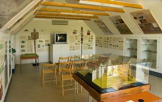 Pasohlávky – archeologická výstava Římané na Mušově