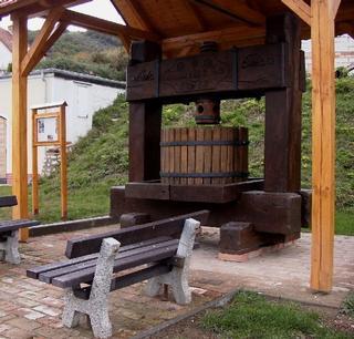 Naučná stezka Pavlovské vinice a vinné sklepy